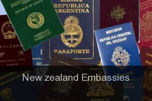 New zealand Embassies
